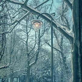 Patricia Hofmeester - Snow in park