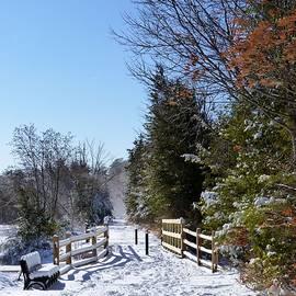 George Martinez - Snow On The Trail