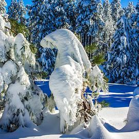 Barbara Zahno - Snow Sculptures