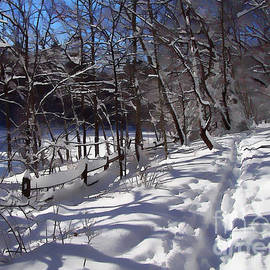 Betsy Zimmerli - Snow Softly