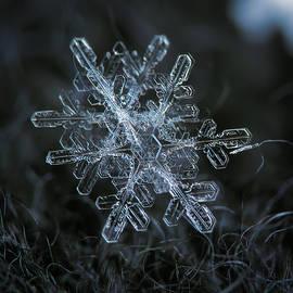 Alexey Kljatov - Snowflake of January 18 2013