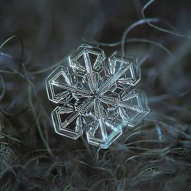 Alexey Kljatov - Snowflake photo - Alcor