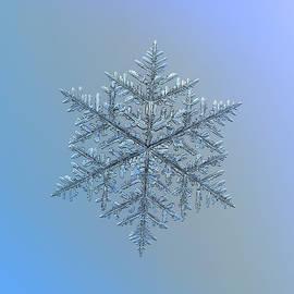 Snowflake photo - Majestic crystal