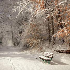 Lori Deiter - Snowy Bench