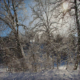 Kathy M Krause - Snowy Day In The Park