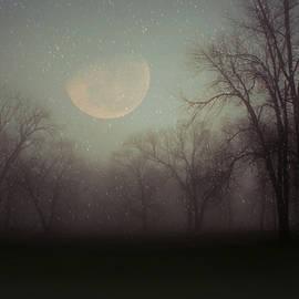Inspired Arts - Moonlit Dreams