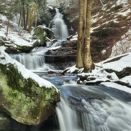 Lori Deiter - Snowy Ozone Falls