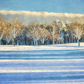 Cathy Kovarik - Snowy Trees