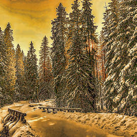 Ericamaxine Price - Snowy Winter Evening