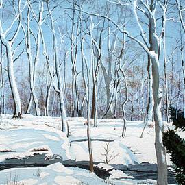 Jim Gerkin - Snowy Wood