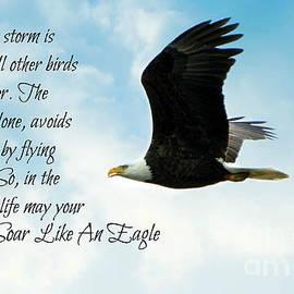 Tina  LeCour - Soar Like An Eagle