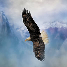 Jai Johnson - Soaring Bald Eagle Art by Jai Johnson