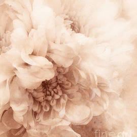 Arlene Carmel - Soft Dahlia