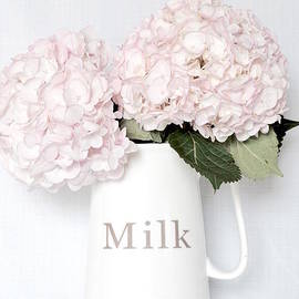 Jeannie Rhode Photography - Soft Hydrangeas in Pitcher