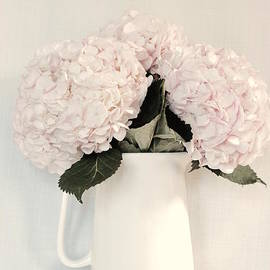 Jeannie Rhode Photography - Soft Pink Hydrangea Bouquet