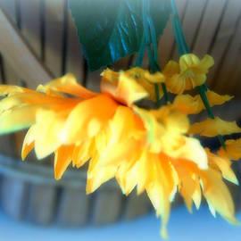 Sue Rosen - Soft sun flowers