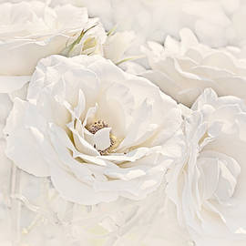Jennie Marie Schell - Softness of Ivory Roses