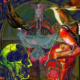 Joseph Mosley - Solar Eagle Vision Tribute