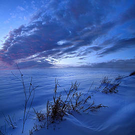 Solitaire Moments Dressed in Blue - Phil Koch