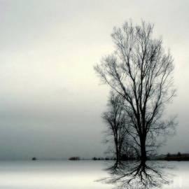 Elfriede Fulda - Solitude