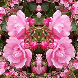 Nancy Pauling - Some Roses 2
