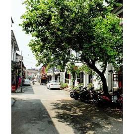 Athin Alias - Somewhere In Fort Kochi