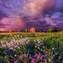 Phil Koch - Songs of Days Gone By