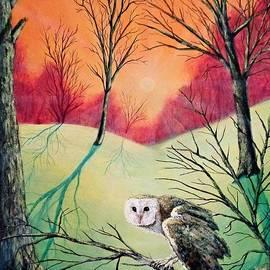 Jack Lepper - Soren Owl of Ga Hoole