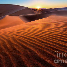 Inge Johnsson - Sossusvlei Sunrise