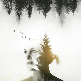 Nicklas Gustafsson - Soul of Nature