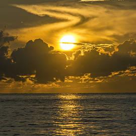Steve Lipson - South Beach 4139