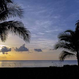 Steve Lipson - South Beach 4338