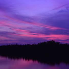 Carol Eade - Southern Lights