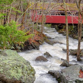 Bill Wakeley - Southford Falls State Park