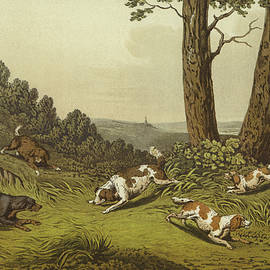 Spaniels - Henry Thomas Alken