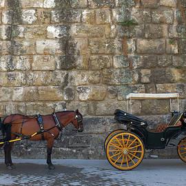 Carlos Caetano - Spanish Carriage