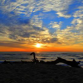 Dianne Cowen - Sparkling Sunrise