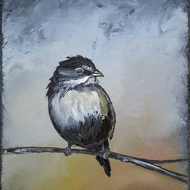 Carolyn Doe - Sparrow