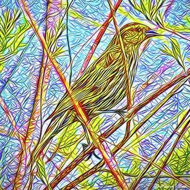 Joel Bruce Wallach - Sparrow In Solitude