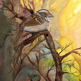 Sherry Shipley - Sparrow