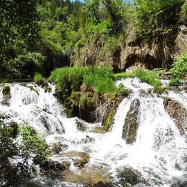 Pamela Pursel - Spearfish Canyon Waterfalls