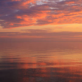 Rachel Cohen - Spectacular Sunset