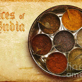 Prajakta P - Spices of India II