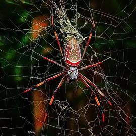 Patrick Witz - Spider Silk