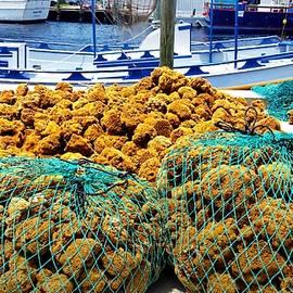 Barbara Chichester - Sponge Docks Tarpon Springs