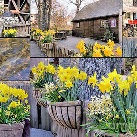 Janice Drew - Spring at the Plimoth Grist Mill