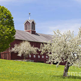 Alan L Graham - Spring Barn
