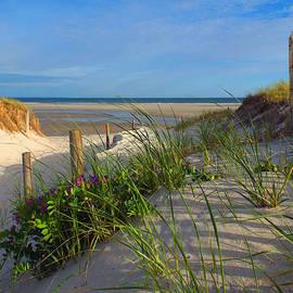 Dianne Cowen - Spring Beach Visions