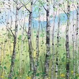 Diane Splinter - Spring Birch Panorama