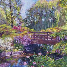David Lloyd Glover - Spring Bridge